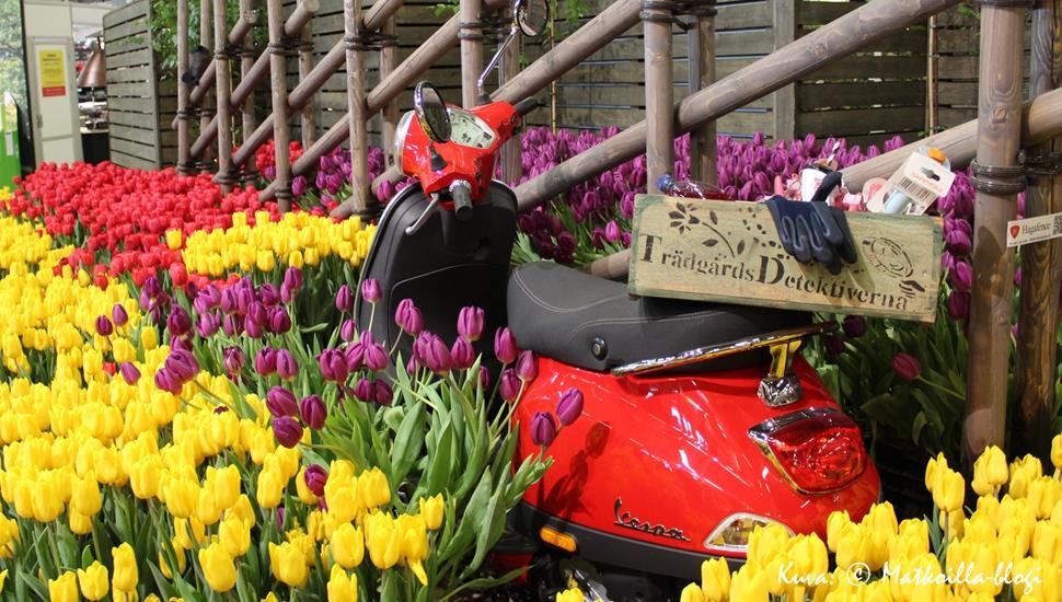 Kevätmessujen 2016 väriloistoa. Kuva: © Matkoilla-blogi