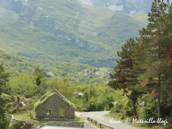 Lovcenin kansallispuiston vehreämpää maisemaa. Kuva: © Matkoilla-blogi