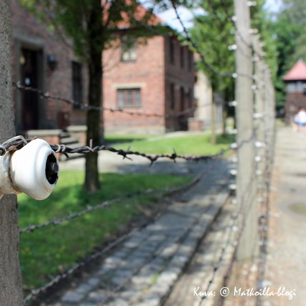 Auschwitz - kuoleman langat. Kuva: © Matkoilla-blogi