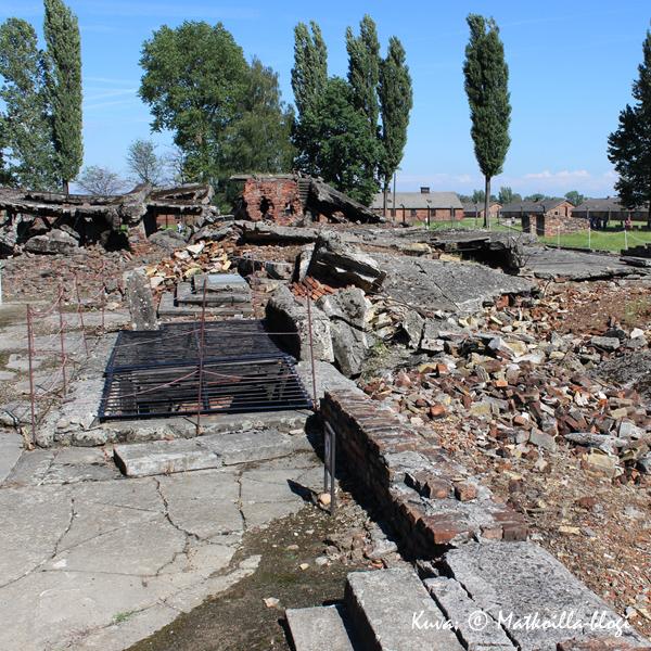 Birkenau - krematorion rauniot. Kuva: © Matkoilla-blogi