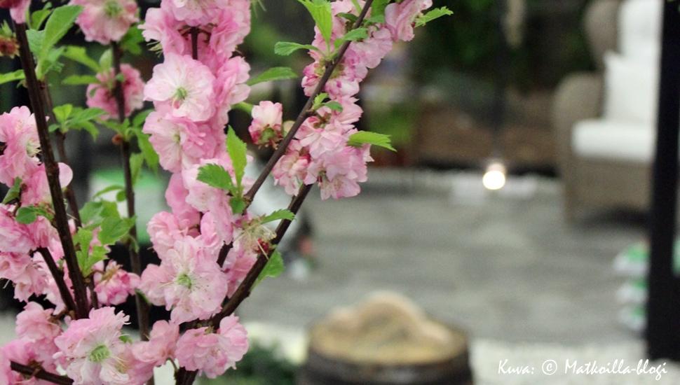 Kevätmessut 2017. Kuva: © Matkoilla-blogi