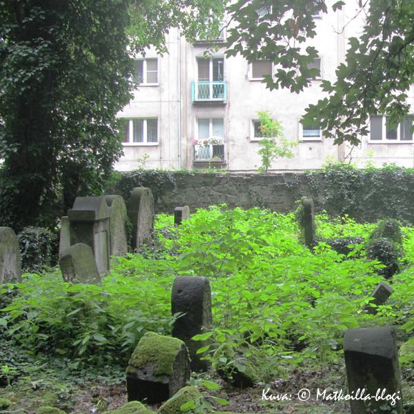 Krakovan uusi juutalainen hautausmaa. Kuva: © Matkoilla-blogi
