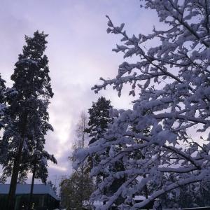 Syyss vaihtelee tnn Helsingiss sataa eilen Hyvinkll talven taikamaa hyvinkhellip