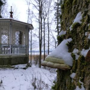 Ihana talvipiv lumisessa maisemassa thisisfinland visitespoo villaelfvik espoo talvi