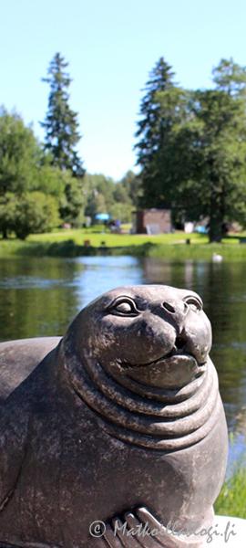 Kuukauden kuva, heinäkuu 2019: Saimaan norppa. Kuva: © Matkoillablogi.fi