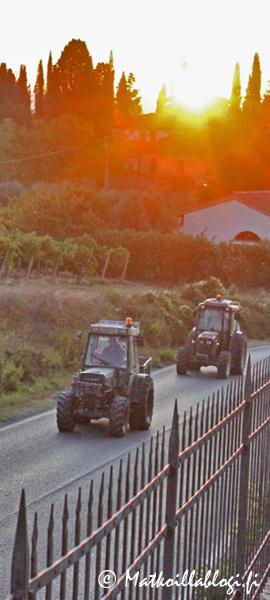 Kuukauden kuva, syyskuu 2020: Aikainen aamu Toscanassa. Kuva: © Matkoillablogi.fi