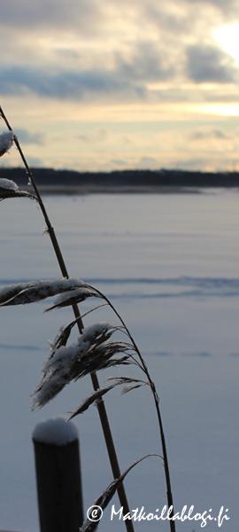 Kuukauden kuva, tammikuu 2021: Tammikuu Laajalahdella Kuva: © Matkoillablogi.fi