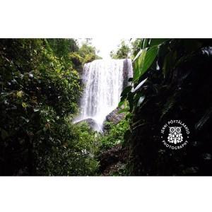 Spring 2017 Waterfall australia waterfall zilliefalls