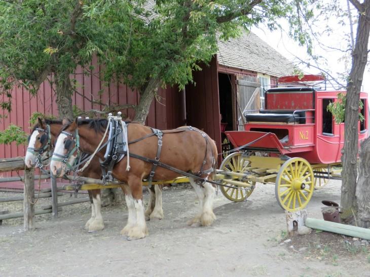 Hevosvankkurit