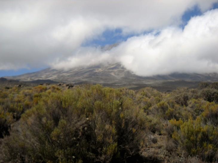 Kilimanjaro pilvien peitossa