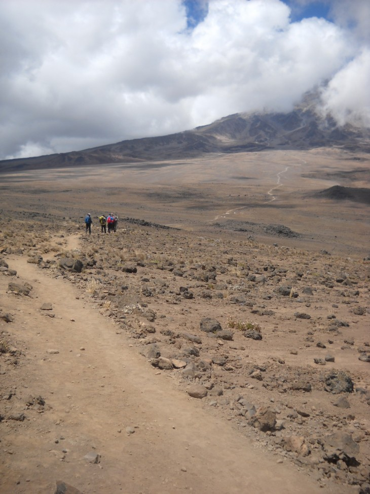 Long road to Kilimanjaro