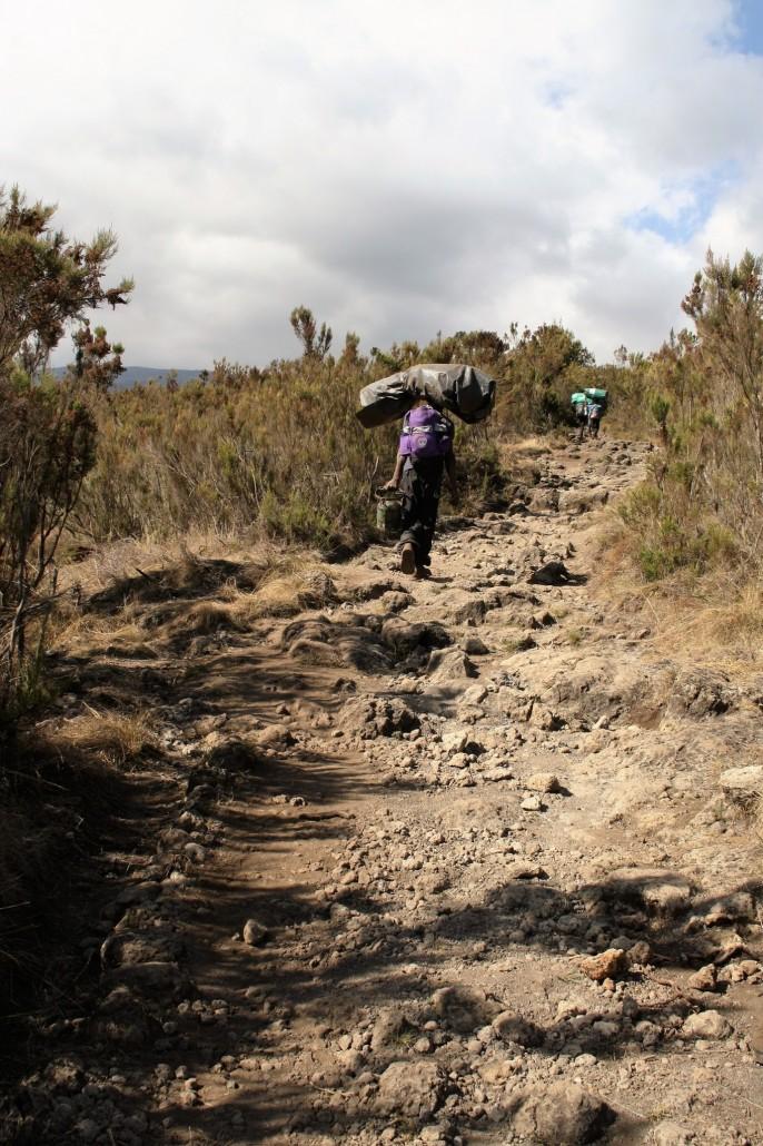 Kantaja Kilimanjarolla