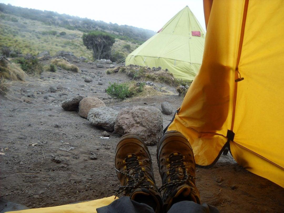 leirielamaa_kilimanjaro