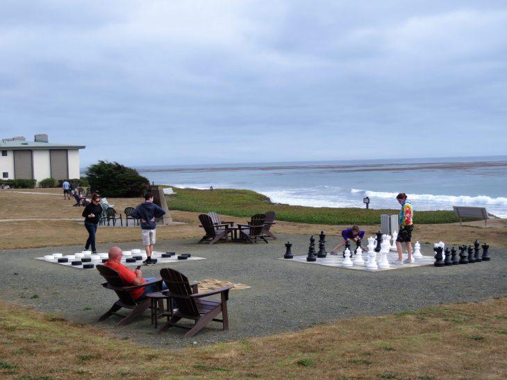 cavalier_oceanfront_resort_piha