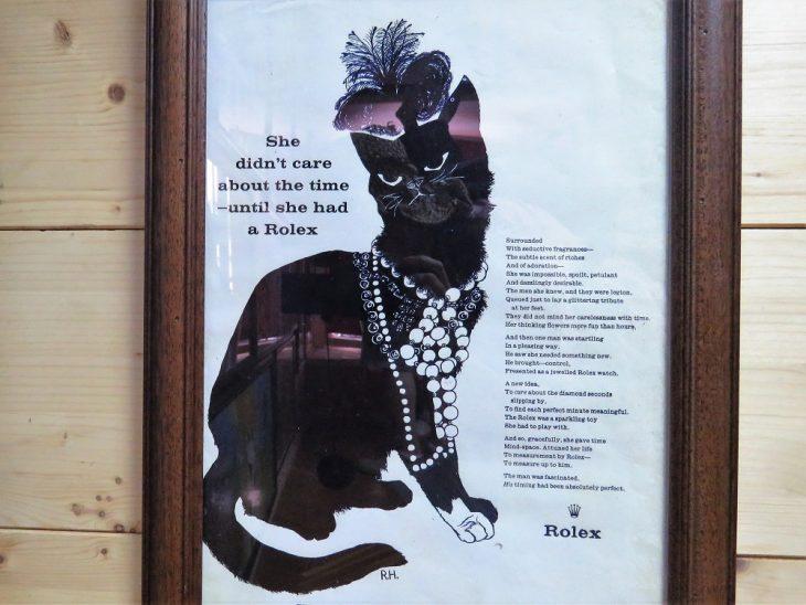 kissa Rolexin mainoksessa