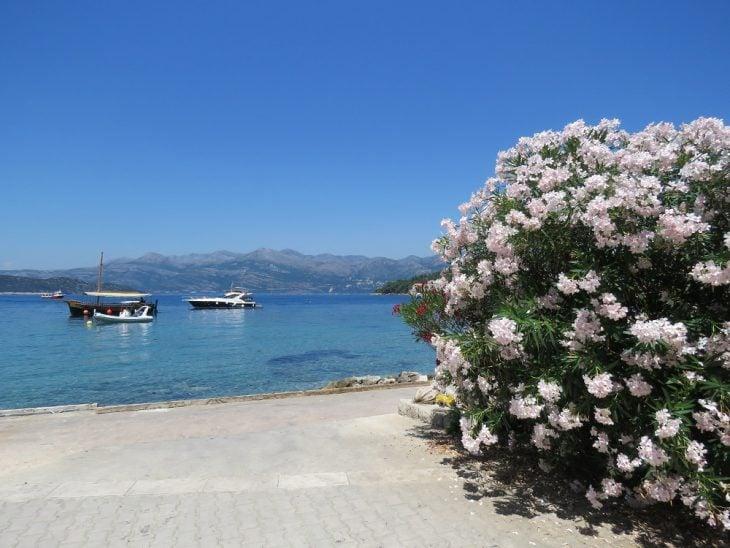 lopud kukkia ja meri
