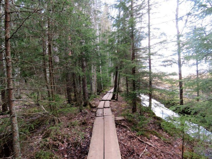 lahti-linnaistensuo-pitkospuut