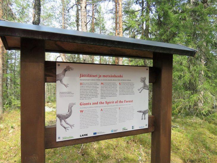 tiirismaan-kierros-jattilaiset-metsanhenki