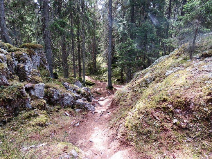 tiirismaan-kierros-kivikkoinen-polku