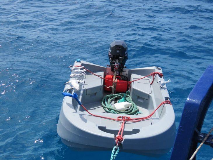 coral-sea-dreaming-pelastusvene