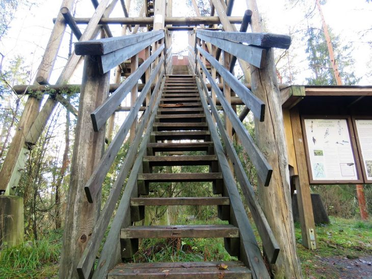 lahti-luhdanjoen-lintutornin-portaat
