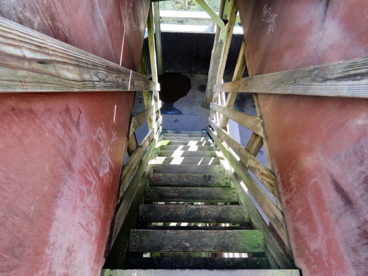 luhdanjoen-lintutornin-portaat