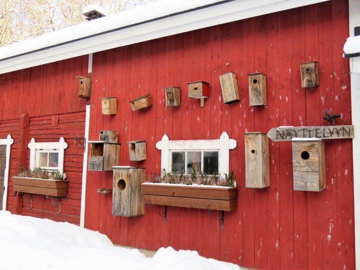 heinolan-lintuhoitola-linnunpontot