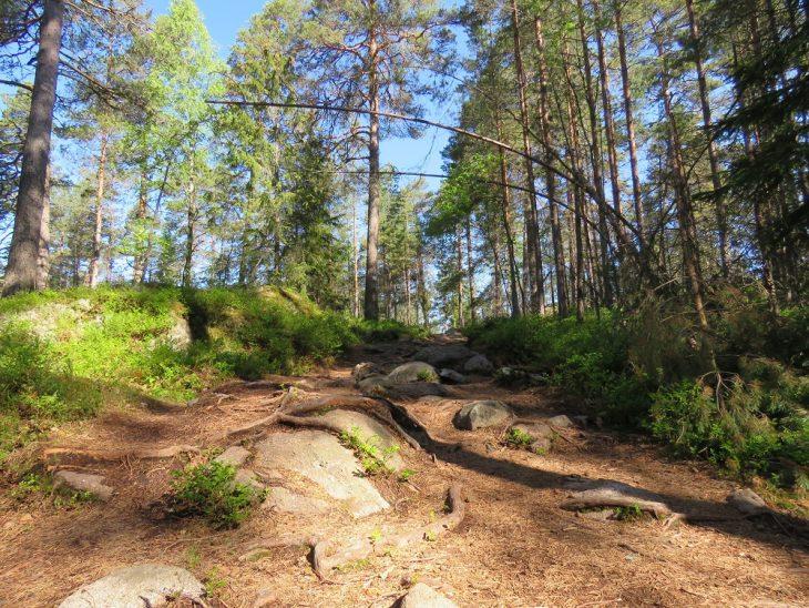 teijon-kansallispuisto-kivinen-maki