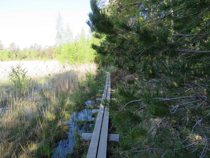 teijon-kansallispuisto-matildajarven-kierros