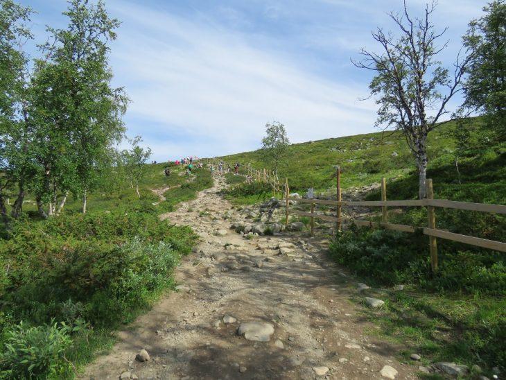 kivikkoinen-polku-saana
