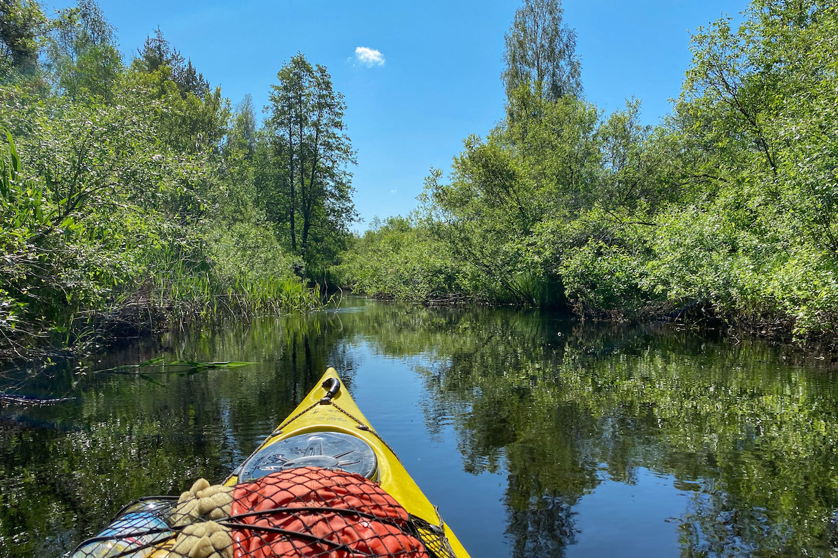 kajakki joella, joka näyttää mangrovemetsältä