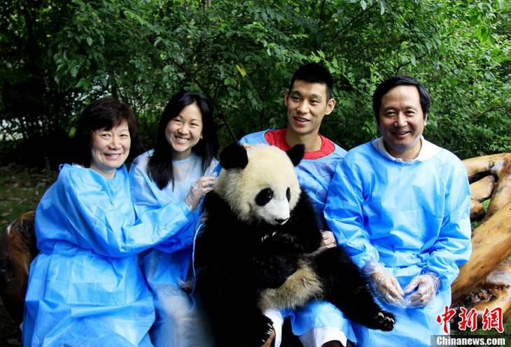 Chengdu Ähtäri panda