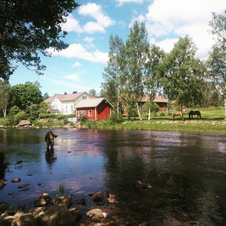 Holmankoskella saa kalastaa idyllisessä maisemassa.