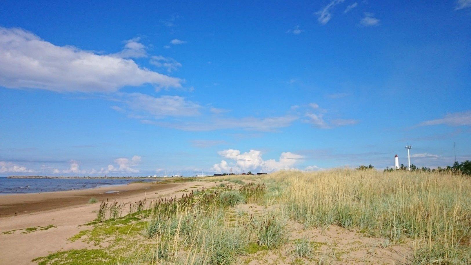 Hailuoto Marjaniemi ranta