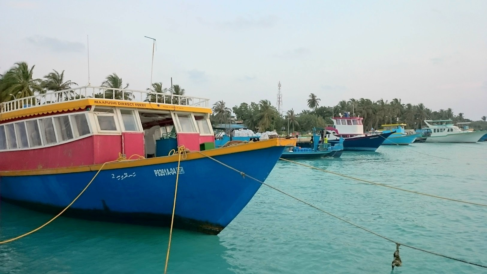 Maafushi julkinen lautta edullisesti malediiveille kokemuksia