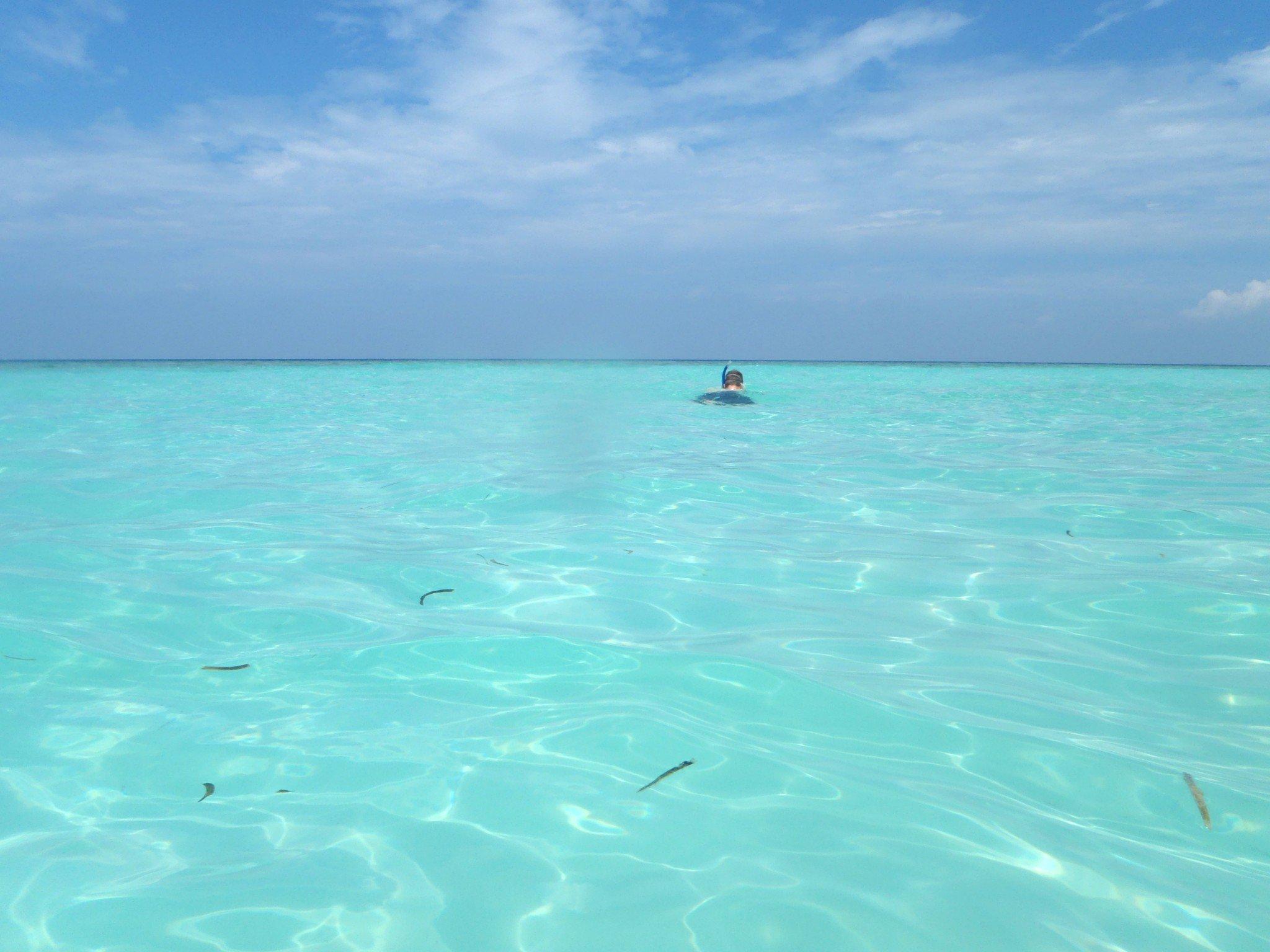 Malediivit Maafushi budjettimatka edullisesti snorklaus