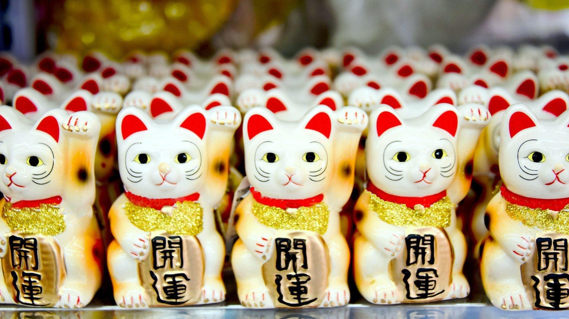 Heiluttava_kissa kiina ostokset