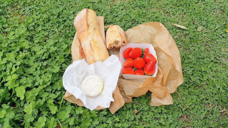 Nizza piknik