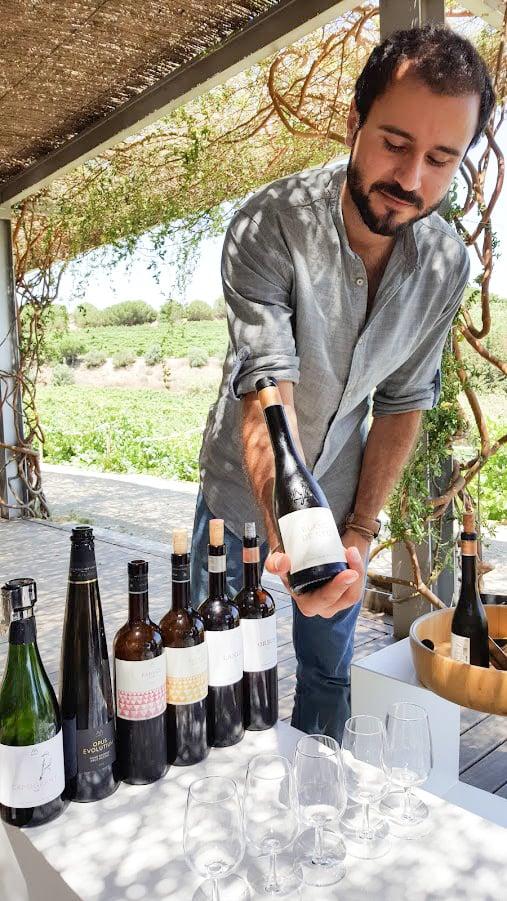viinimatka viininmaistelu viinitila Barcelona Espanja