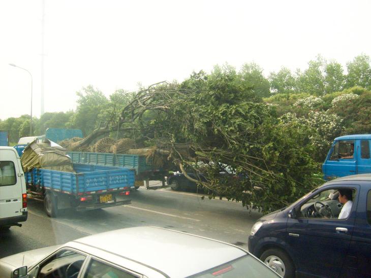 Kiina liikenne vinkit ensikertalaiselle