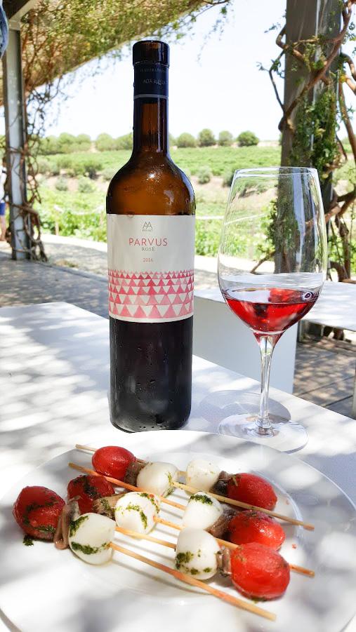 viinimatka viinitila Barcelona