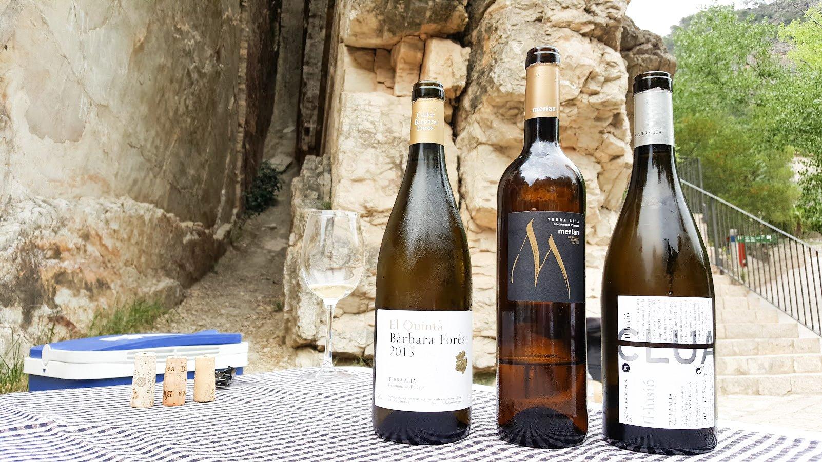 barcelona katalonia pyöräretki päiväretki viinimatka