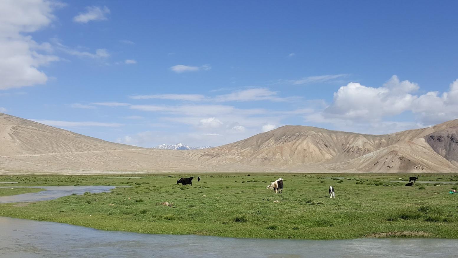 Tadzikistan Kirgisia Pamir jakki