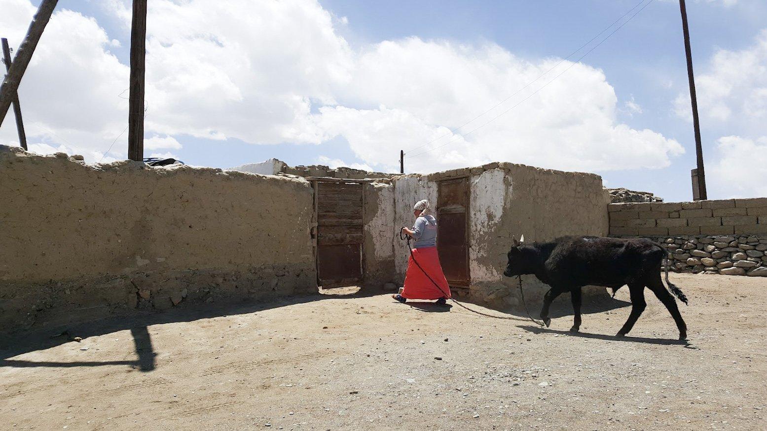 Tadzikistan Kirgisia Pamir vuoristo