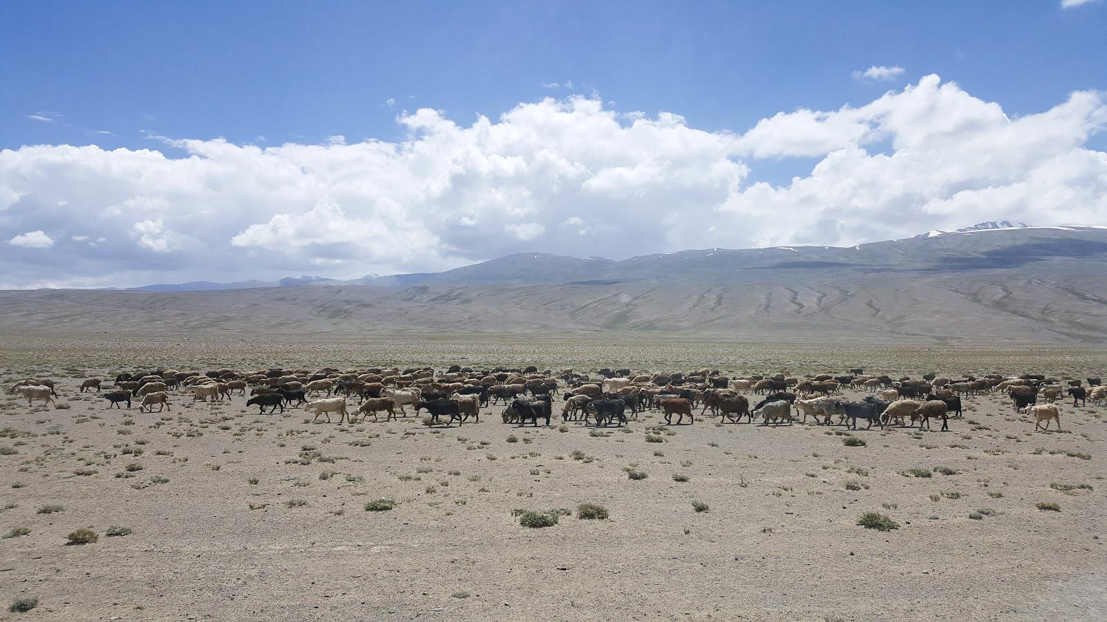 Tadzikistan Kirgisia Pamir