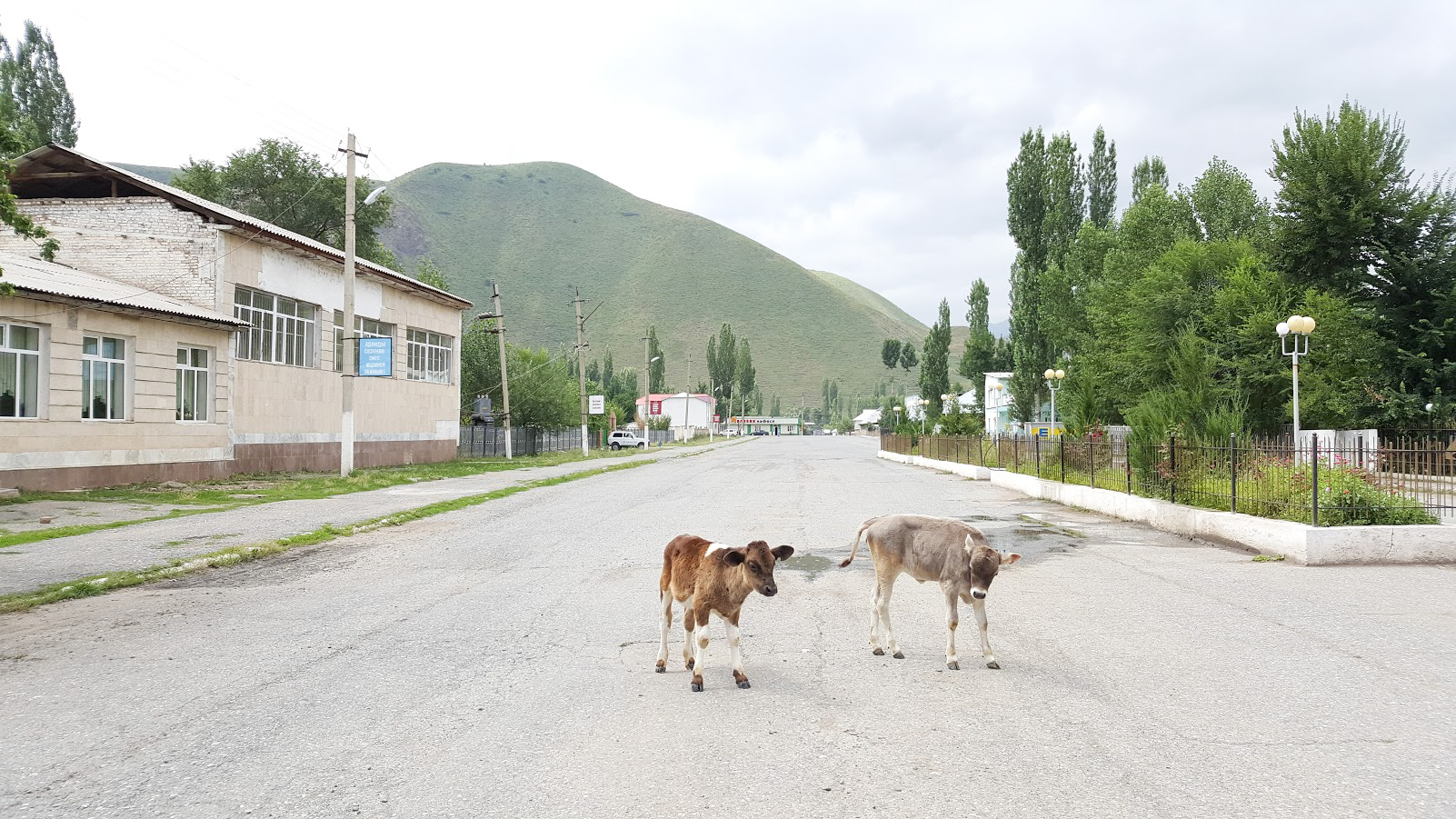 Kirgisia kokemuksia