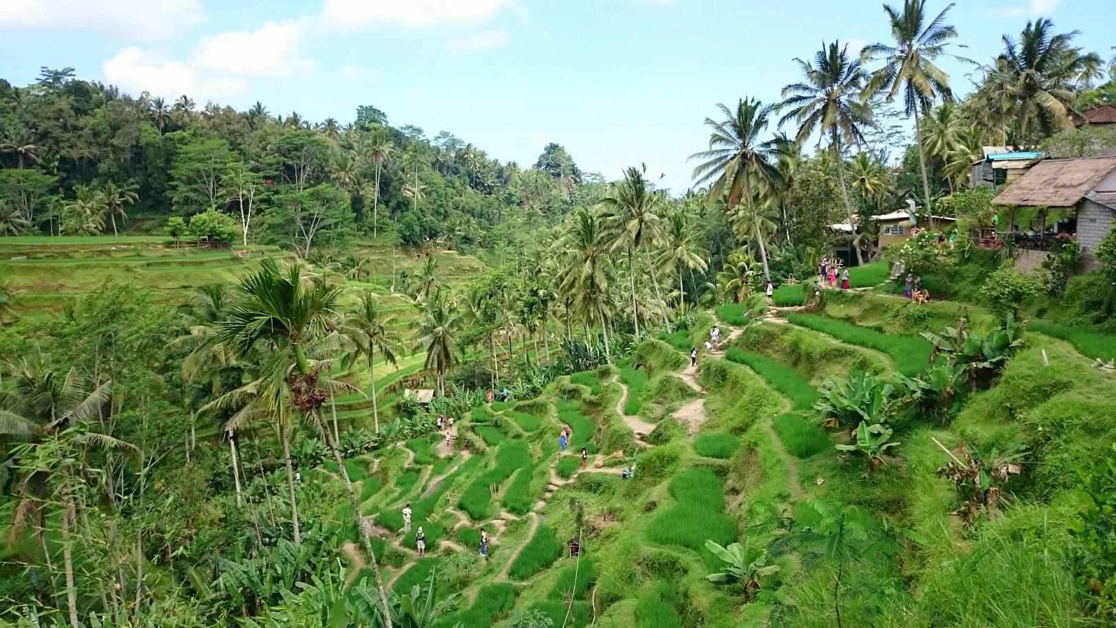 Bali nähtävyydet