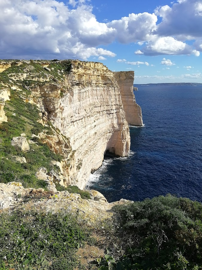 Gozo patikointi