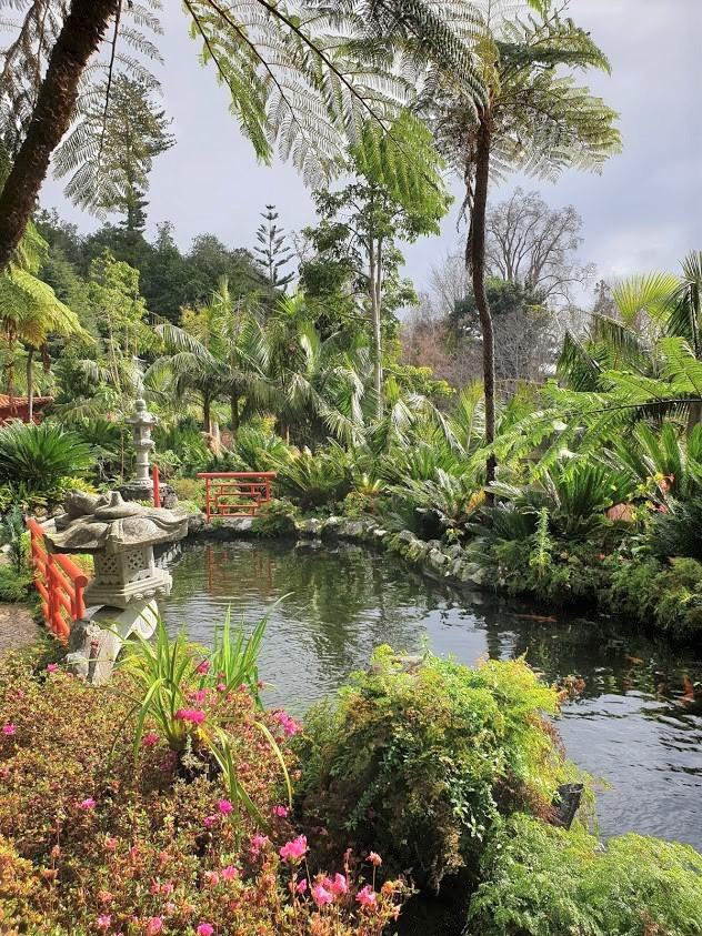 madeira funchal monte palace kasvitieteellinen puutarha