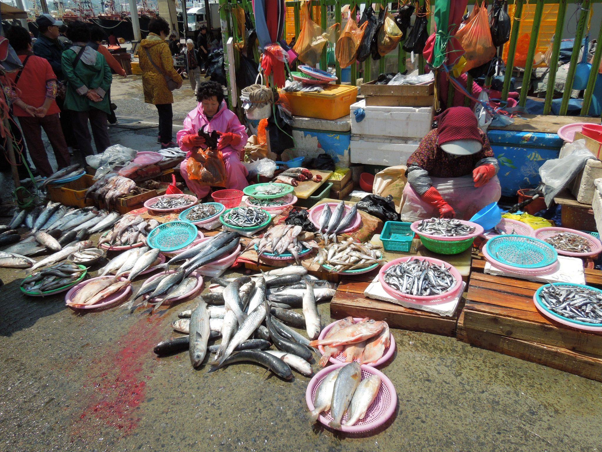 Busan nähtävyydet Jagalchi Fish Market Etelä-Korea